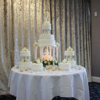 multi-tier-fountain-wedding493FF670-E73D-451A-C2B9-3F1181FF6A12.jpg
